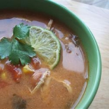 COOKING ON A BUDGET WEIGHT WATCHERS CHICKEN TORTILLA SOUP