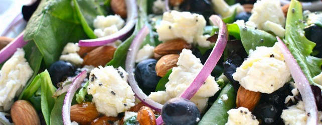 Cooking On a Budget: Feta and Blueberry Spring Salad