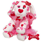 FREE SHIPPING with VALENTINES PURCHASE AT BUILD-A-BEAR WORKSHOP THRU 2-6-2013
