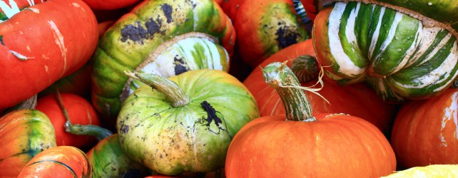 How to Make Halloween a Frugally Fabulous Holiday