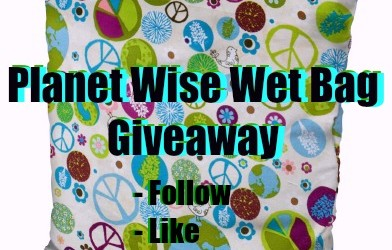 Earth Day Freebies Planet Wise Wet Bag