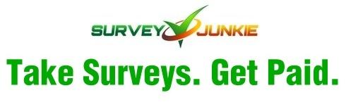 The Survey Junkie